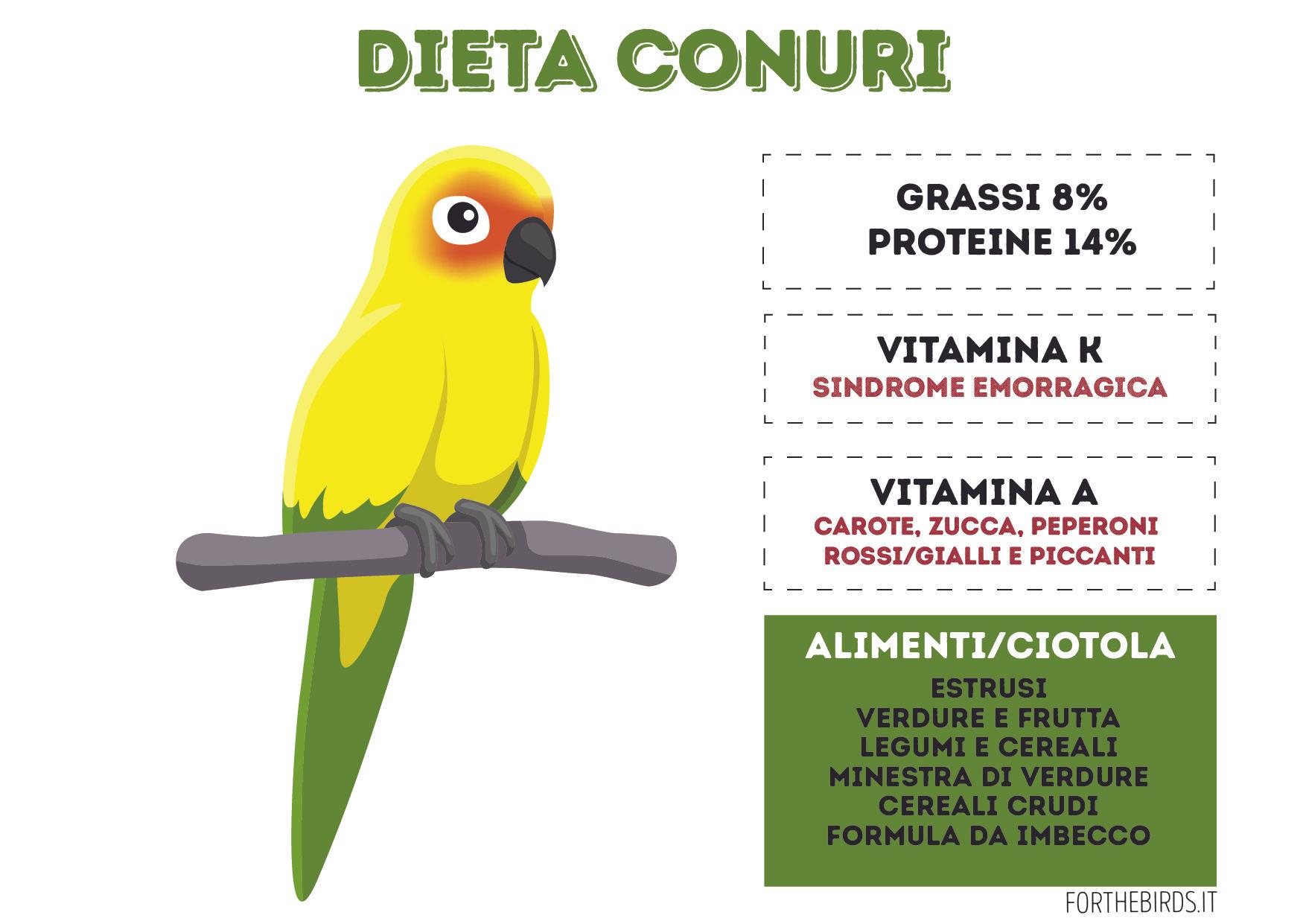 Dieta Conuri