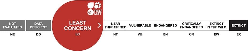 threat-categories-LC