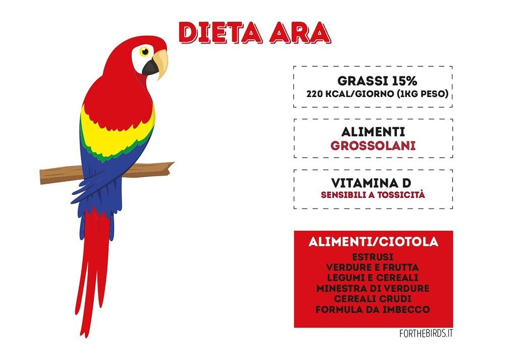 Dieta Ara