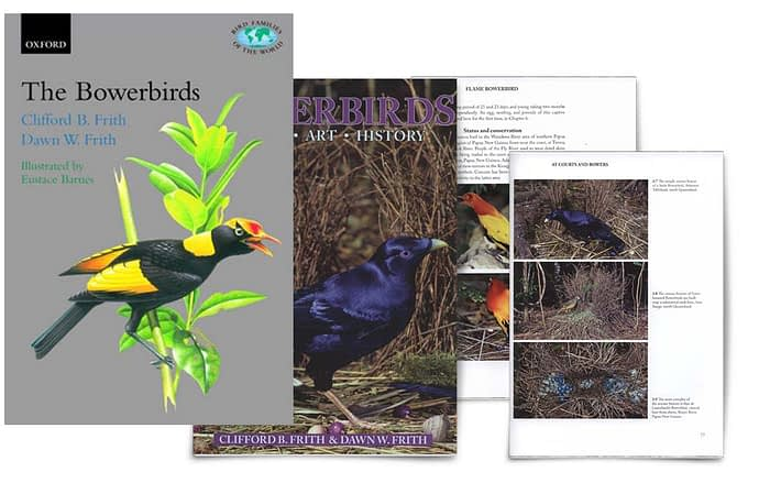 The Bowerbirds: Ptilonorhychidae di Clifford Frith e Bowerbirds: Nature, Art & History di Clifford B Frith e Dawn W Frith